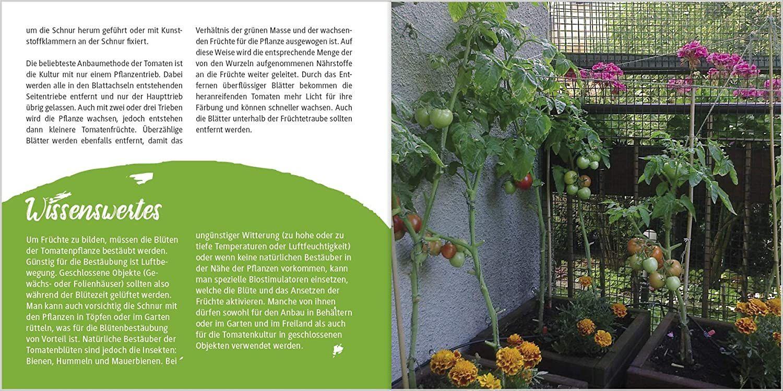 Tomaten Manufaktur Pflanzen Pflegen Und Verputzen Amazon De Lv Buch Bucher In 2020 Pflanzen Gemusegarten Tipps Verputzen
