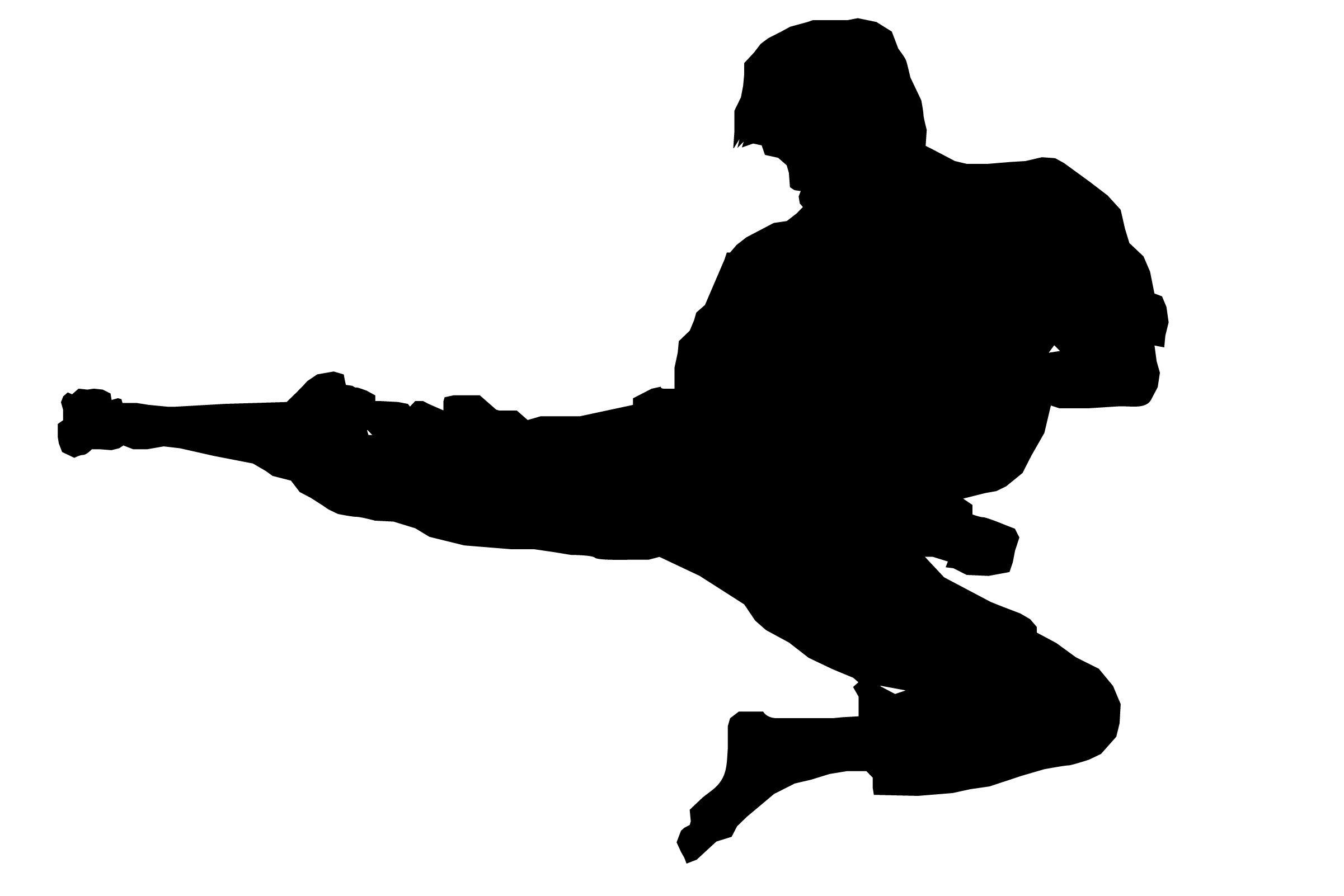 Karate Silhouette Clip Art Karate Demonstration | Cricut ideas ...