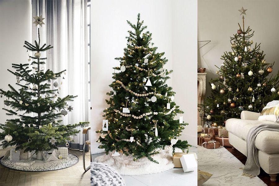 Christmas Designers.What Type Of Christmas Tree Decorator Are You Christmas