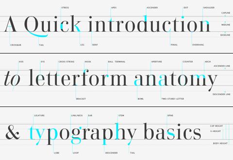 Anatomy of Typography