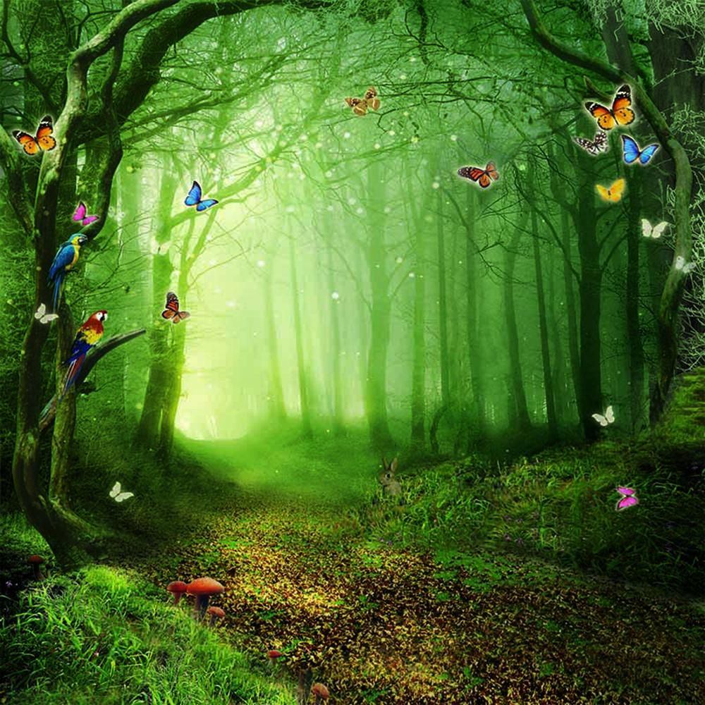 Fairy Tale Alice Wonderland Forest Butterfly Backdrop Photography Studio Background Forest Backdrops Photography Backdrops Photography Studio Background