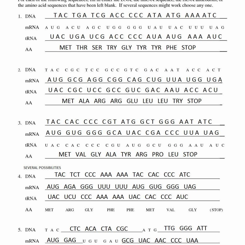 Transcription Worksheet Key worksheetsuatechnicsz