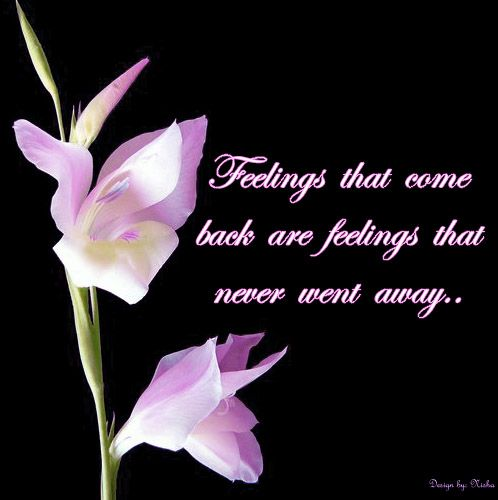 Sad Emotional Quotes Emotional Love Quotes Images And Photos Joy
