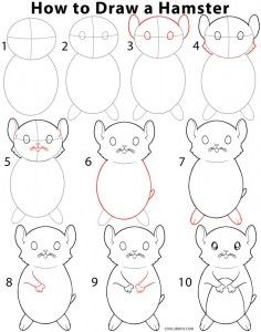 how to draw a hamster step by step instructions for drawing