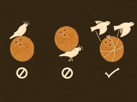 90235a9d1 The proper way for a swallow to carry a coconut | favorite movies ...