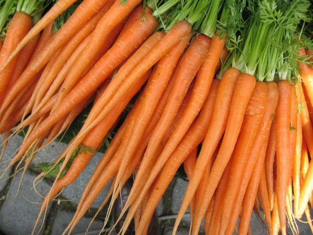 How To Grow Cool Season Carrots In The Home Garden 400 x 300