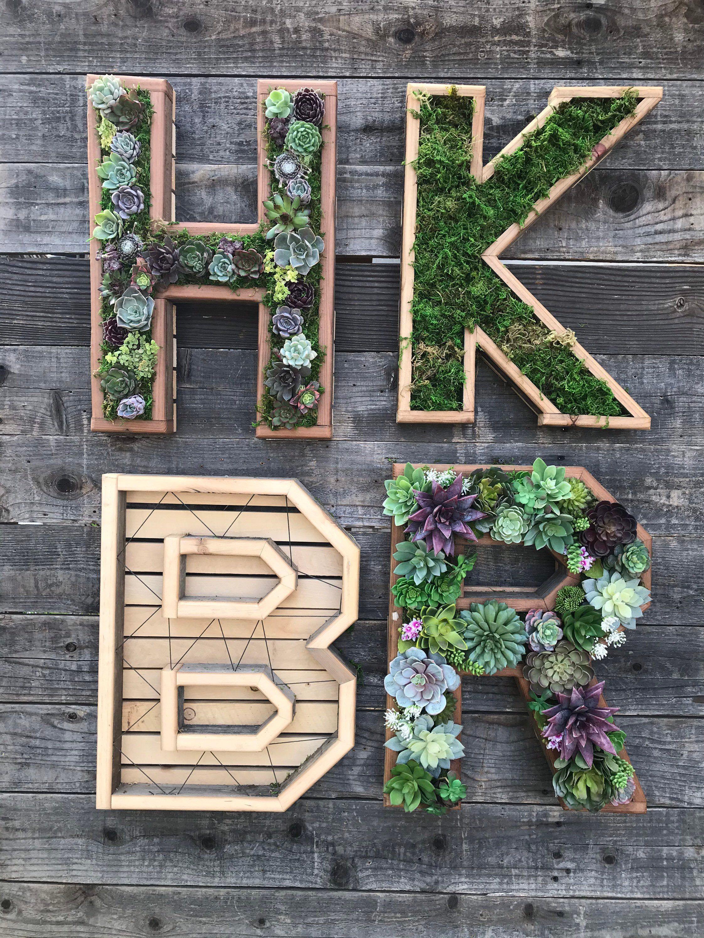 diy succulent planter kit