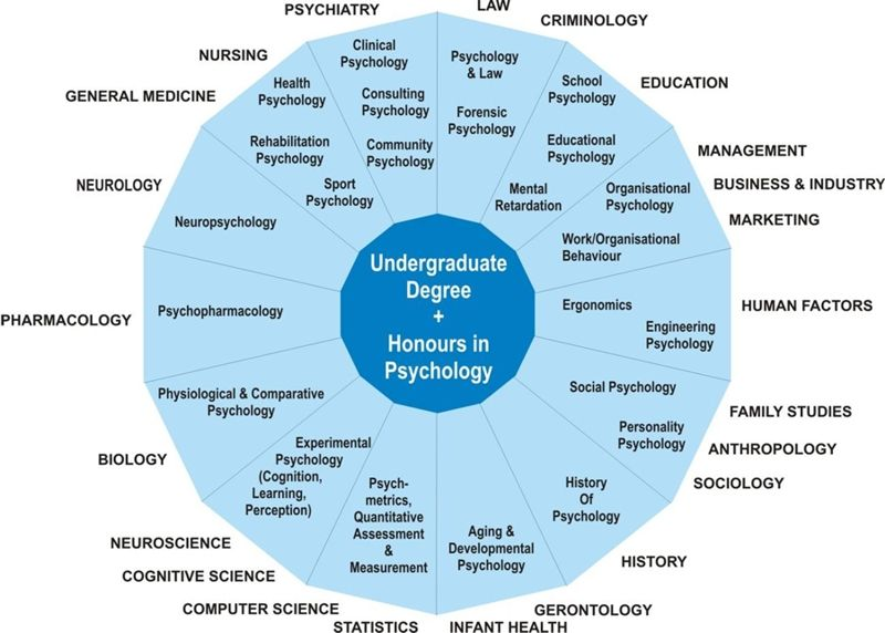 Different areas of Psychology..More courses need to be taught in ...