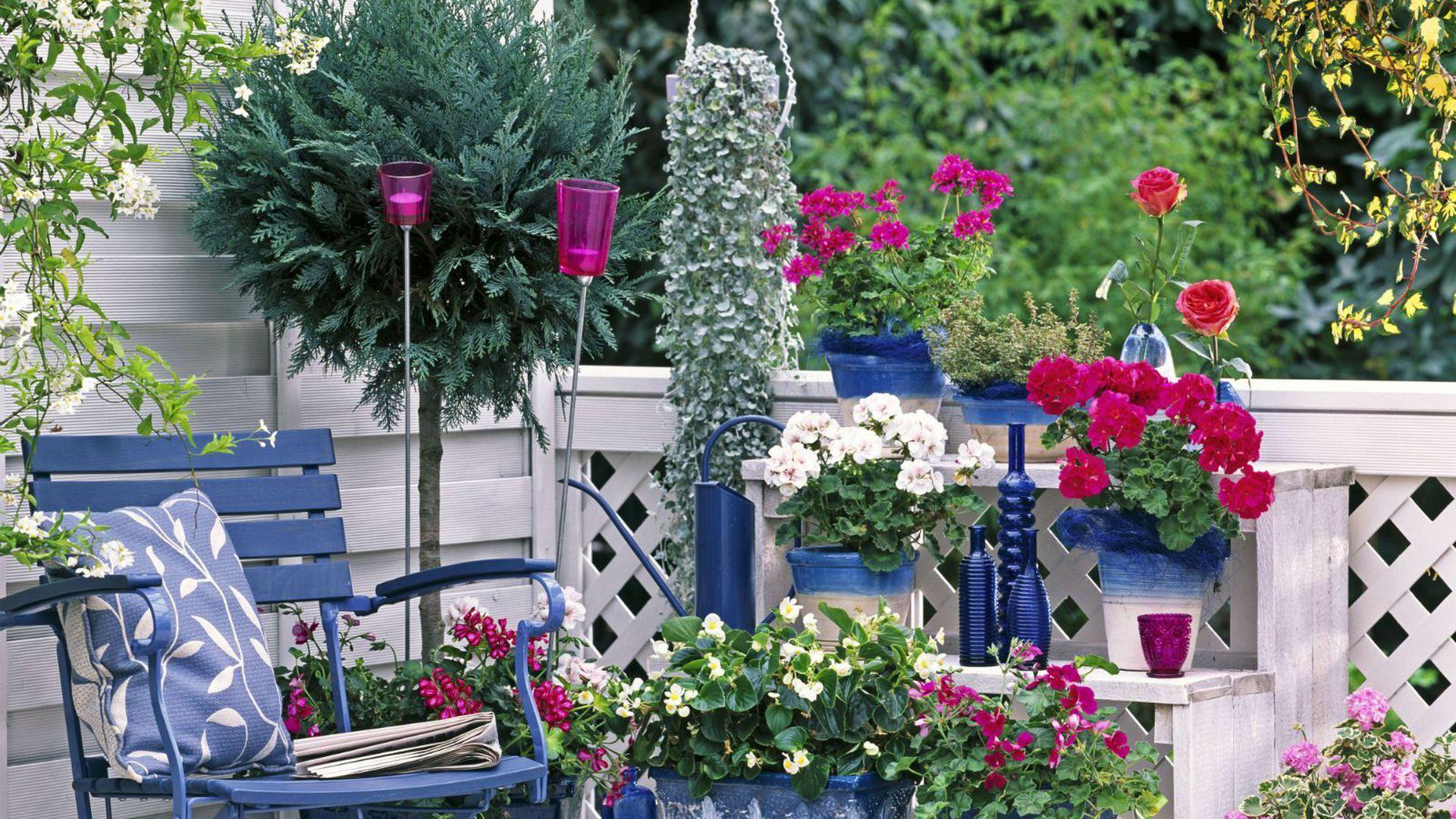 Slikovni Rezultat Za Cvijece Za Balkon Na Suncu Beautiful Flowers Garden Beautiful Gardens Plants