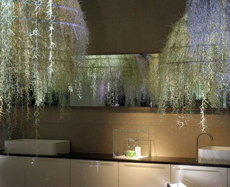 The French designer Patrick Nadeau. Corian frames draped in a moss called Tillandsias Usneoïdes.