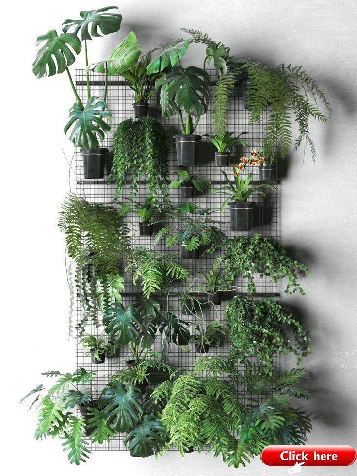 Wandgitter mit Topfpflanzen – 2019 #hangingplantsindoor