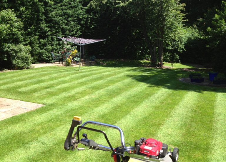 Lawn Mowing In Sutton Coldfield It S Surrounding Areas Garden Services Lawn Mowing