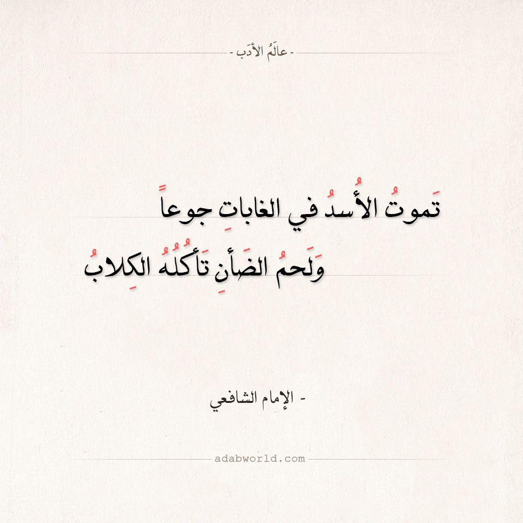 شعر الإمام الشافعي تموت الأسد في الغابات جوعا عالم الأدب Quotes Poems Arabic Calligraphy