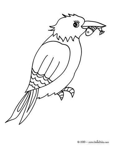 Common Kingfisher Coloring Page. Nice Bird Coloring Sheet. More Original  Content On Hellokids.com