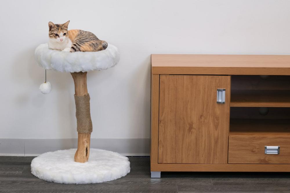 Mau Wood Cat Condo Modern Cat Tree Cat Tower Furniture Etsy Modern Cat Tree Modern Cat Furniture Modern Cat