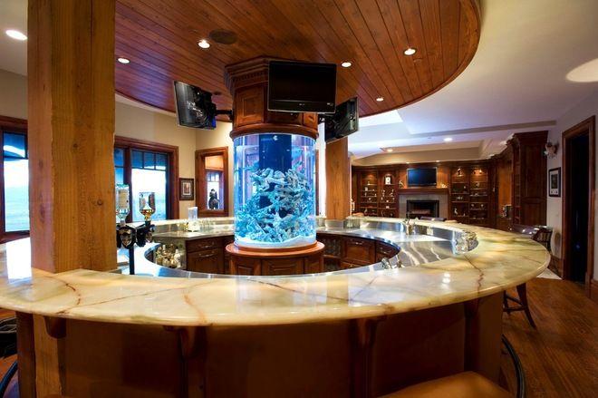 I Would Have A Floor To Ceiling Aquarium Designing Nemo