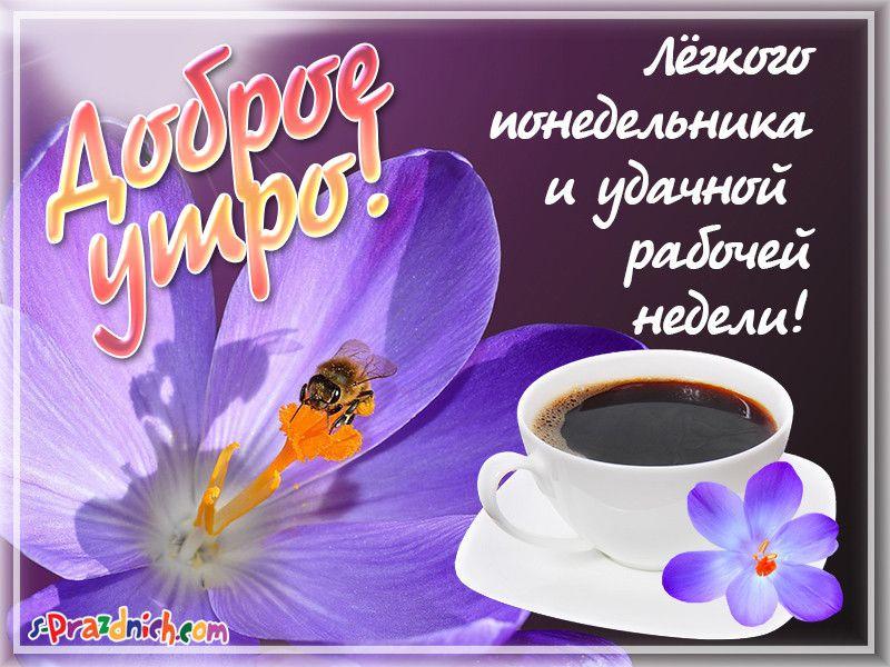 Приколы над, картинки на понедельник с пожеланиями доброго утра