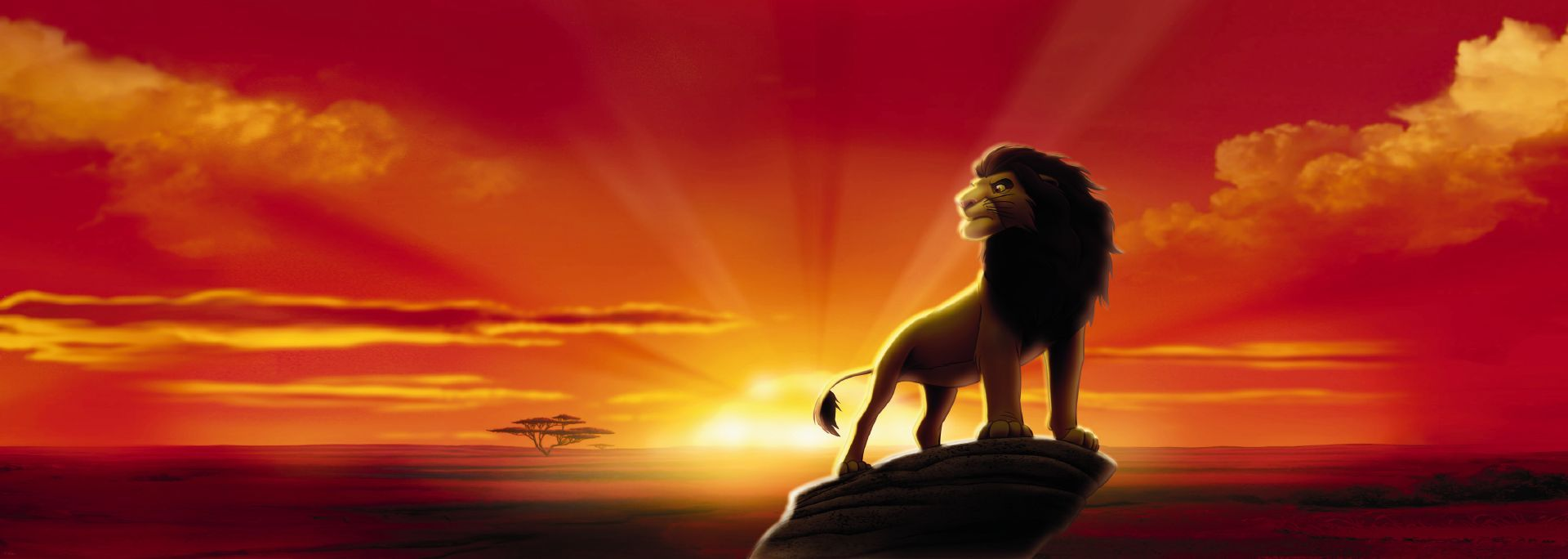 Lion King Banner