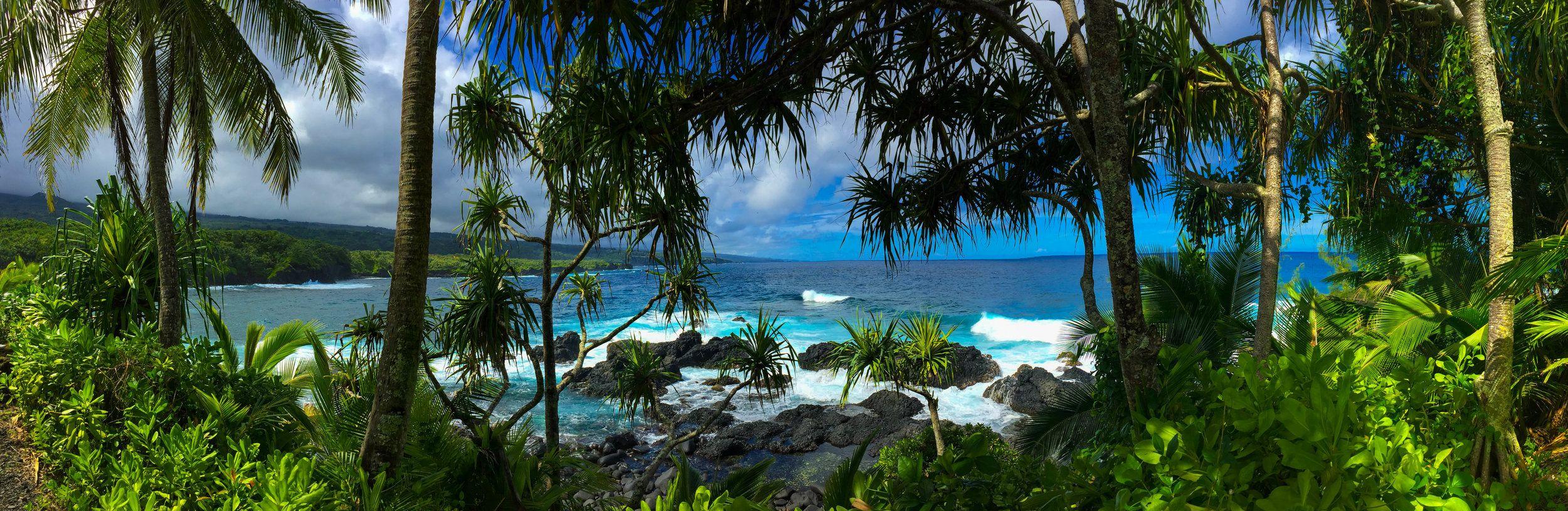 10f1399e3511f713038dd0ffbfcfb628 - Hana Maui Botanical Gardens Hana Hi