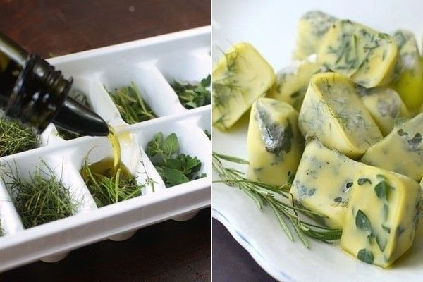 Herbs Olive Oil Cubes Recipes How To Cook Pasta Food Hacks