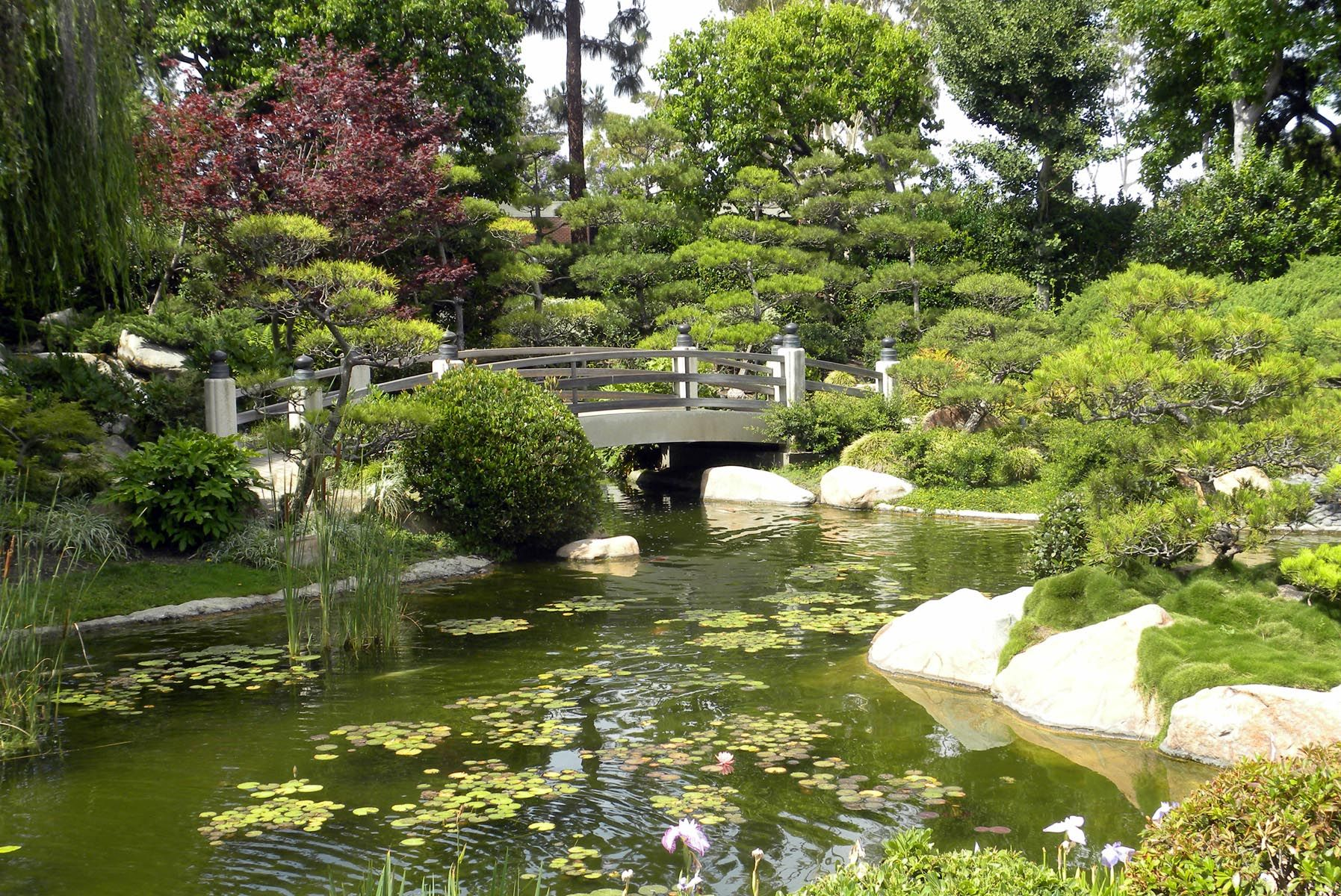 Long Beach CA | Japenese and Chinese Gardens | Pinterest | Long ...