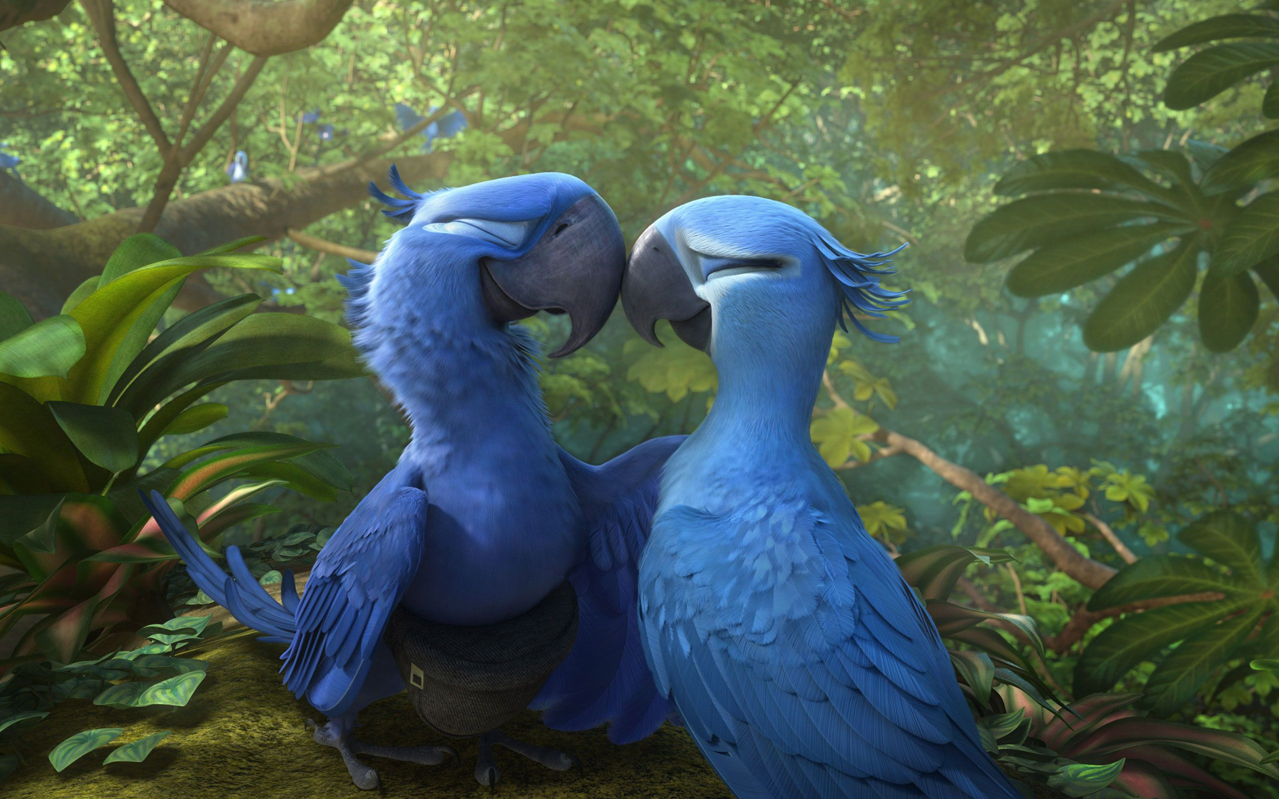 Are you looking for rio 2 hd wallpapers download latest are you looking for rio 2 hd wallpapers download latest collection of rio 2 hd voltagebd Choice Image