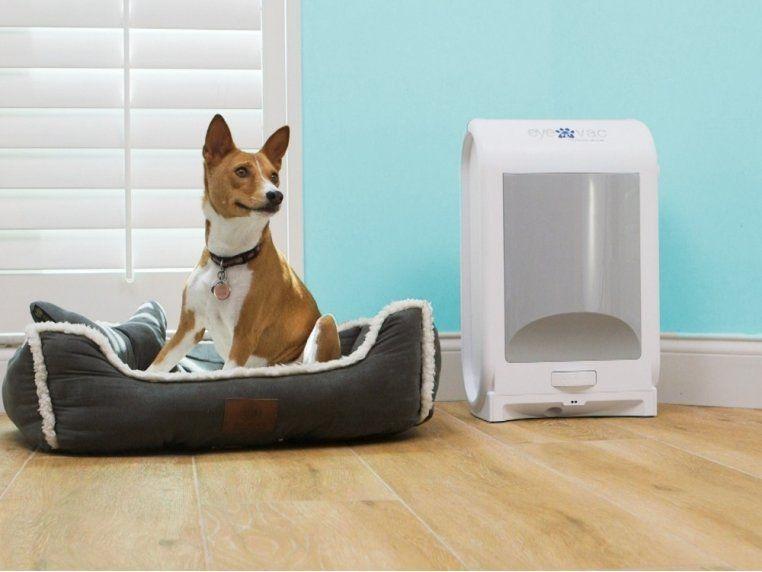 Eyevac Pet Touchless Vacuum In 2020 Vacuums Pets House