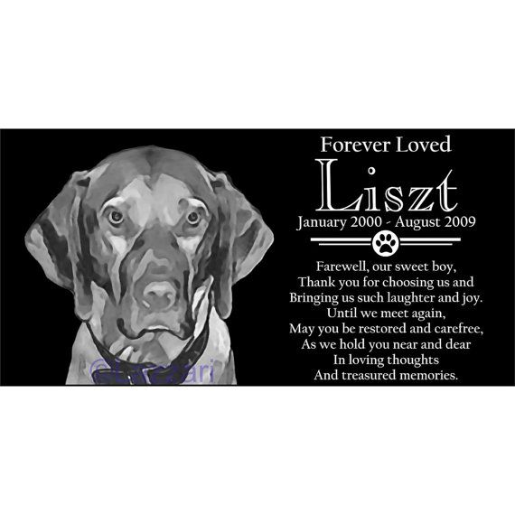 Personalized Hungarian Vizsla Dog Pet Memorial 12x6 Inch