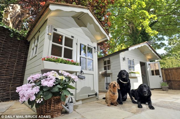 Tom Rawstorne And Mutt Inspect The Ultimate Kennel Dog Houses Luxury Homes Kennel