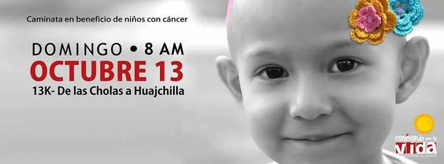 CAMINANDO POR LA VIDA - Caminata en Beneficio de Niños con Cancer - 13 de Octubre - La Paz