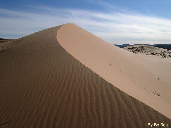 Coral Pink Sand Dunes Photo http://www.zionnational-park.com/