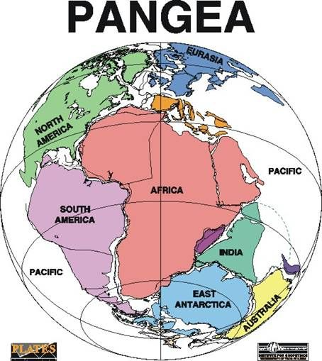 Pangaea, The theory of Pangea is that millions of years ago all ...