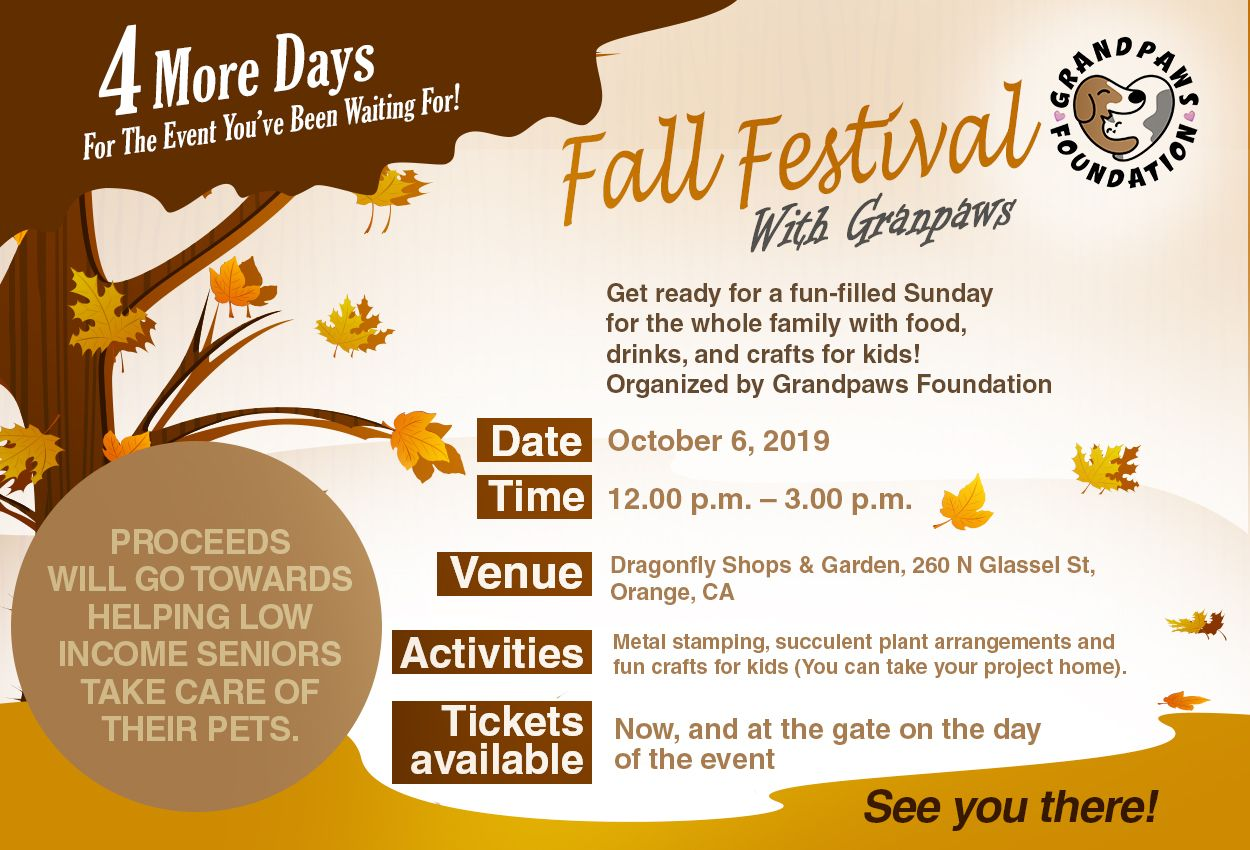 The fun Sunday is organized by Grandpaws Foundation, which
