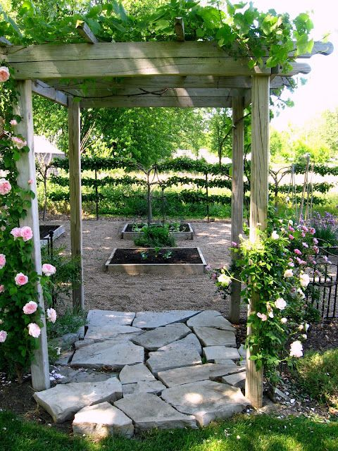 Arbor and fence