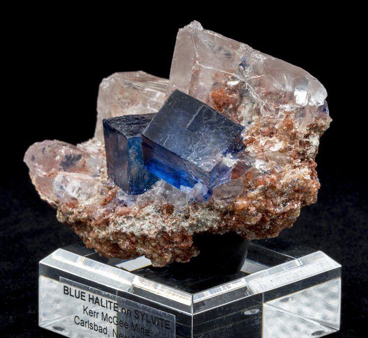 Halite Sylvite Intrepid Potash Mine Carlsbad Potash District Eddy Co New Mexico Usa Blue Halite Crystals 2 2 Cm In Size Size 83 X 56 X 47mm