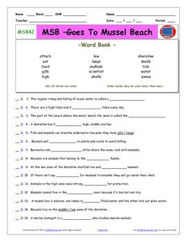 A Magic School Bus Goes To Mussel Beach Worksheet An