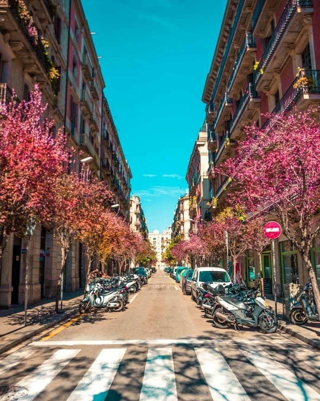Barcelona Barcelona cityscape downtown Barcelona