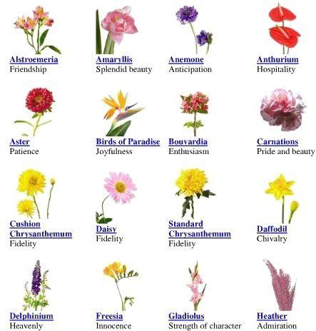 Flower Chart Flower Chart Flower Meanings Chart Flower Meanings