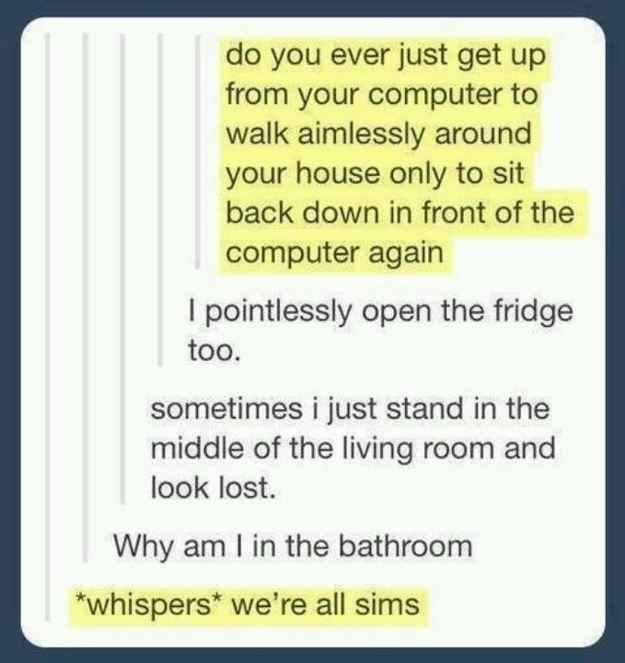 You begin to suspect you're living in someone else's Sims game.