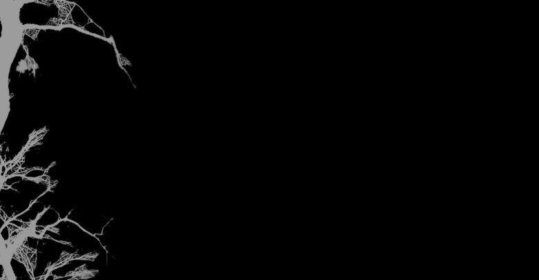 رمزيات خلفيات سوداء كيوت