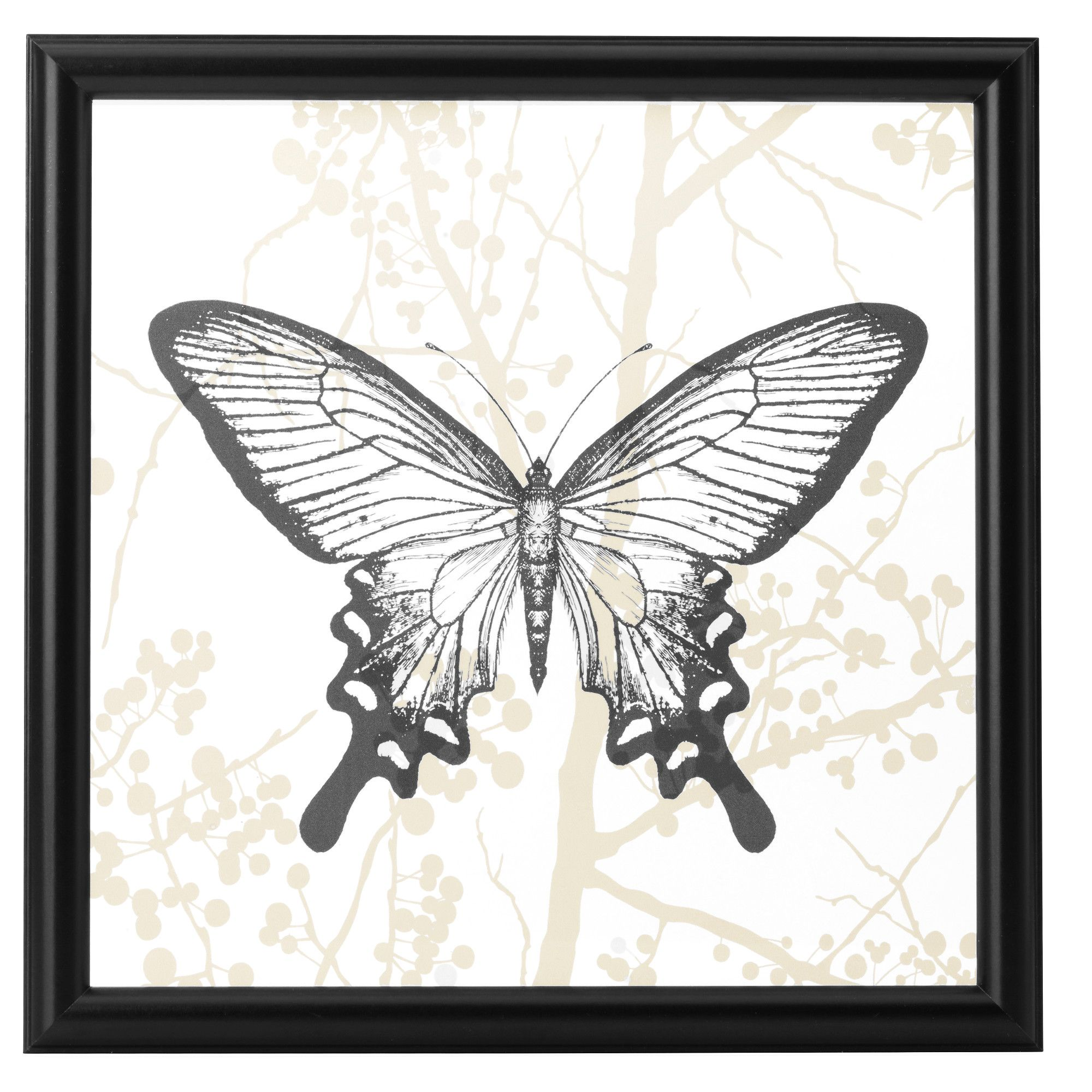GRÄSÅSEN, Bild, Schmetterling, Jetzt bestellen unter: https://moebel ...