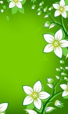 Download 240x400 White Flowers Cell Phone Wallpaper Category Abstract Cellphone Wallpaper Pretty Wallpapers Flower Wallpaper