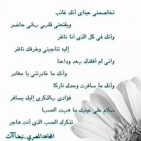 Pin By Tamer Hussein On Words Words Poems Person
