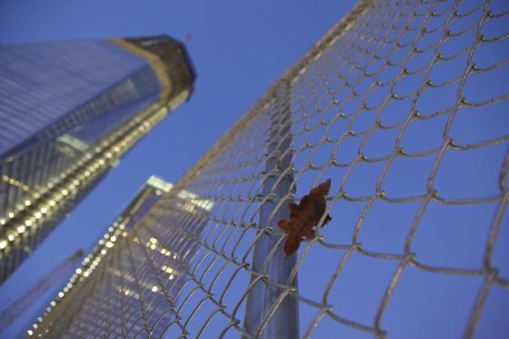 The Lens: Viewing the 9/11 Memorial | National September 11 Memorial & Museum