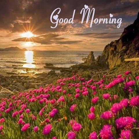 Attrayant Itu0027s The Last Day Of June Make It A Good One Morning Hello July Good  Morning Morning Quotes Good Morning Quotes Goodbye June Summer Good Morning  Quotes