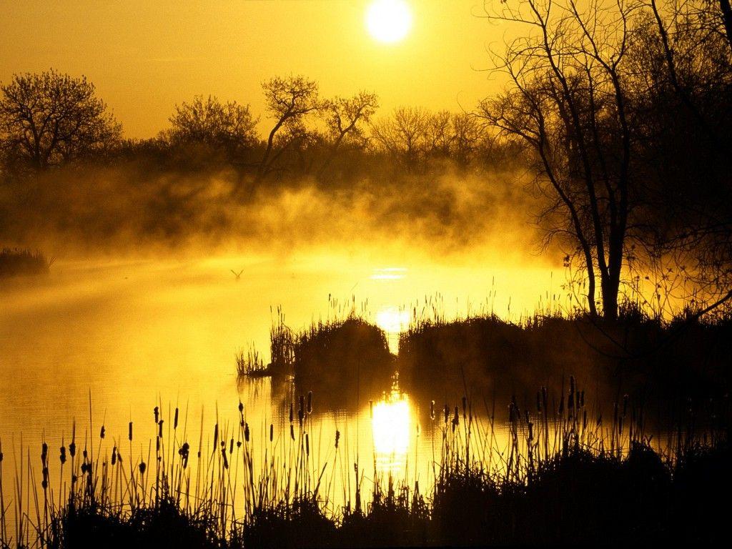 Golden Sunrise Wallpaper Landscape Prints Sunrise Wallpaper Hd Nature Wallpapers