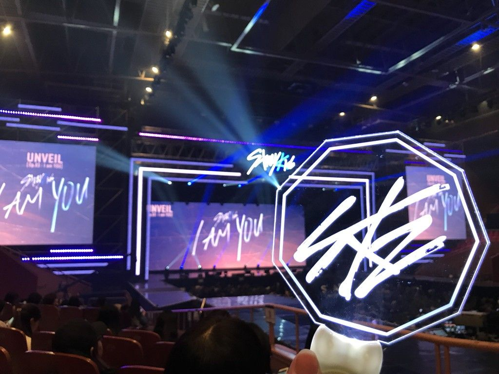 Stray Kids lightstick | Kids pictures, Stray, Kpop aesthetic