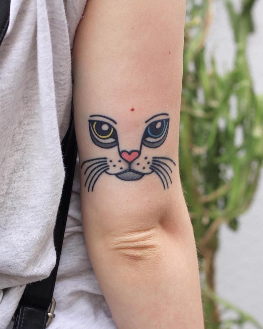 Kitty Is Healed Well Cat Kitty Cattattoo Bydgoszcz