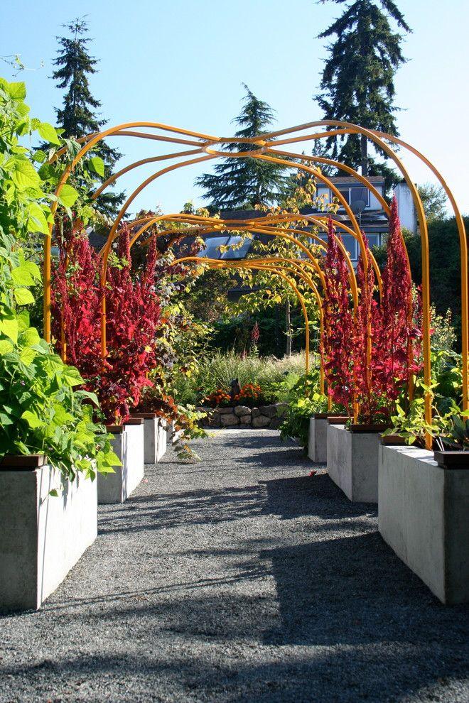 Contemporary Trellis Ideas Part - 32: Garden Trellises Landscape Contemporary With Concrete Planters Container  Garden Gray Gravel Metal Trellis Modern Landscape Orange