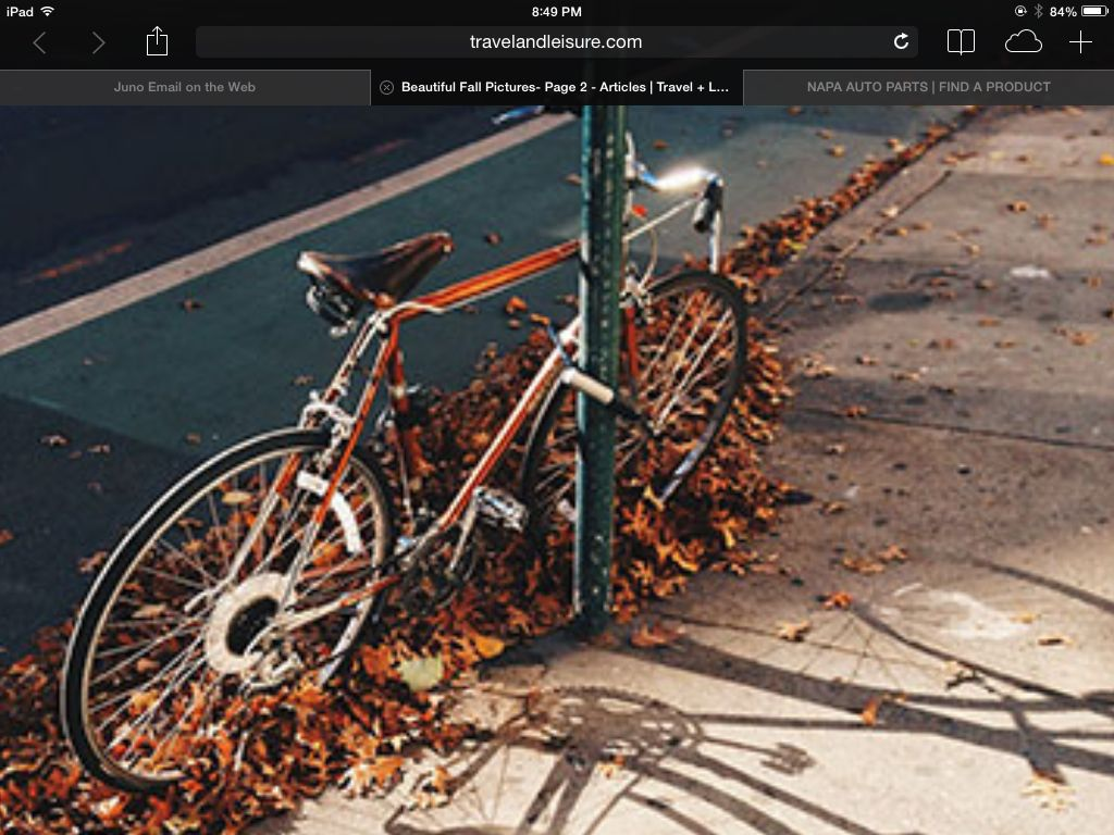 Fall in the city. Ride your bike, it's cool